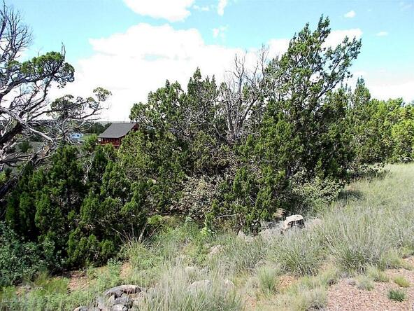 1926 Creekside, Show Low, AZ 85901 Photo 8
