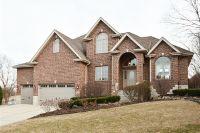 Home for sale: 10849 Lentfer Ct., Orland Park, IL 60467