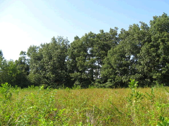 2 Acres Old Greensboro Rd., Jonesboro, AR 72401 Photo 1