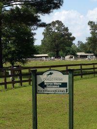 Home for sale: 11.17a Cavallo Trail, Lloyd, FL 32337