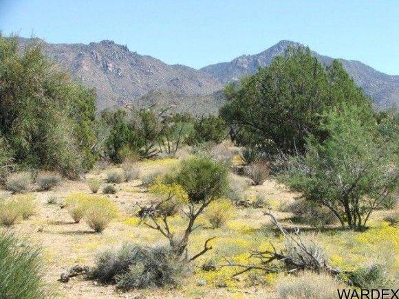 3578-B E. Desert Willow Dr., Yucca, AZ 86438 Photo 9