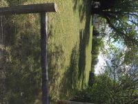 Home for sale: 2805 E. Central Ave., Bentonville, AR 72712