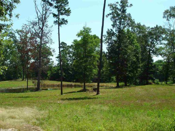 106 Ball Park Rd., Mount Ida, AR 71957 Photo 16