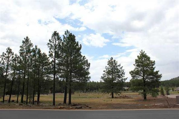 9533 Sierra Springs Dr., Pinetop, AZ 85935 Photo 2