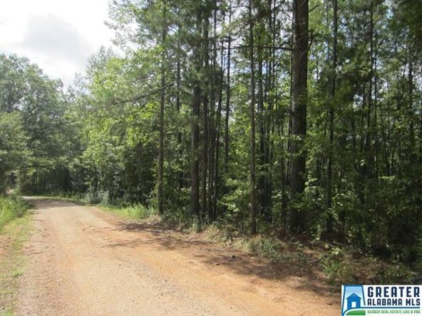 3.77 Acres Thomas Ln., Ashland, AL 36251 Photo 2
