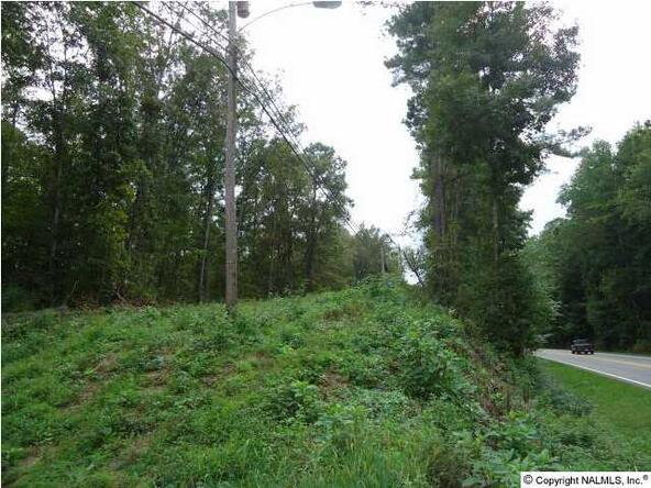 Hwy. 79, Guntersville, AL 35976 Photo 5