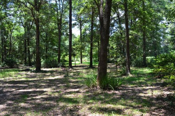 5673 S. County Rd. 95, Gordon, AL 36343 Photo 7