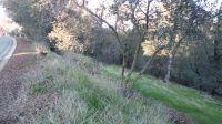 Home for sale: 0 Ridgecrest Ct., Lot 2, Sutter Creek, CA 95685
