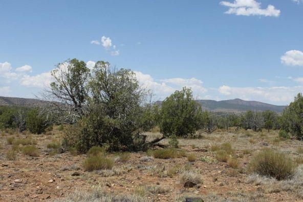 3 Stockman, Ash Fork, AZ 86320 Photo 6
