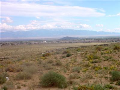 1200 Vista de Bosque S.W., Los Lunas, NM 87031 Photo 13