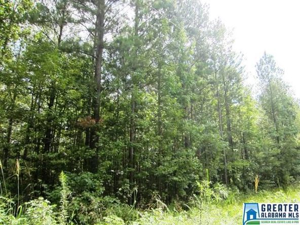 3.1 Acres Thomas Ln., Ashland, AL 36251 Photo 3