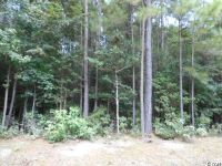 Home for sale: Lot 2 Trinity Rd., Hemingway, SC 29554
