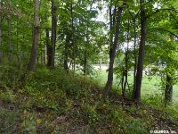 Home for sale: Co Rd. 16, Lot #2, Canandaigua, NY 14424