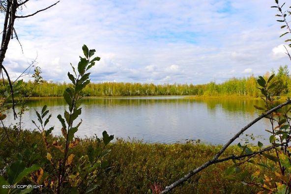 13923 W. Big Lake Rd., Big Lake, AK 99652 Photo 1