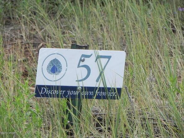 561 S. Rockcreek Dr., Show Low, AZ 85901 Photo 37