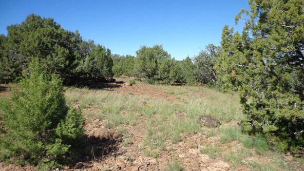 514 Westwood Ranch Lot 514, Seligman, AZ 86337 Photo 14