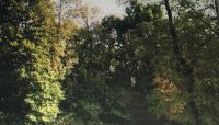 Home for sale: 000 River Ridge Ln., Sandwich, IL 60548