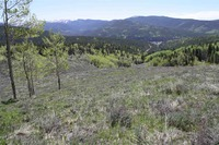Home for sale: Tbd Woodland Way, Pitkin, CO 81241