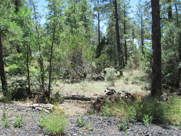 4948 Forest View Rd., Lakeside, AZ 85929 Photo 20