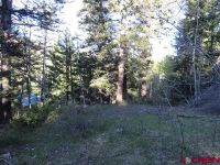 Home for sale: 1099 Clark Mountain Ln., Antonito, CO 81120