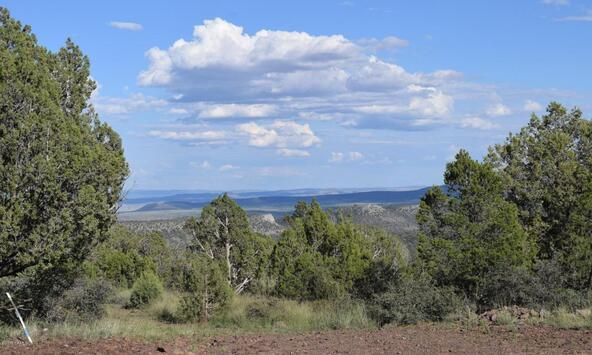 76+83+92 Shadow Rock Ranch, Seligman, AZ 86337 Photo 14