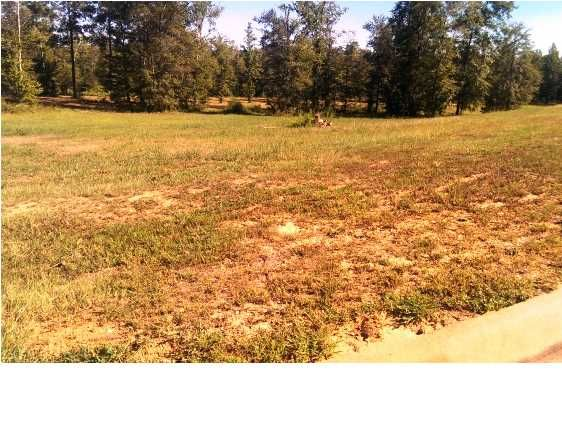 9 Fox Run, Deatsville, AL 36022 Photo 2