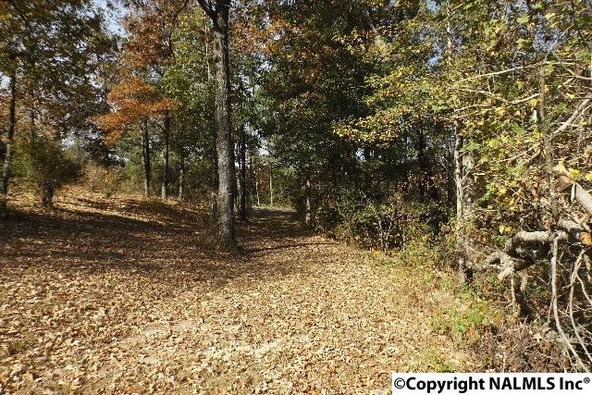 154 County Rd. 594, Sylvania, AL 35988 Photo 44