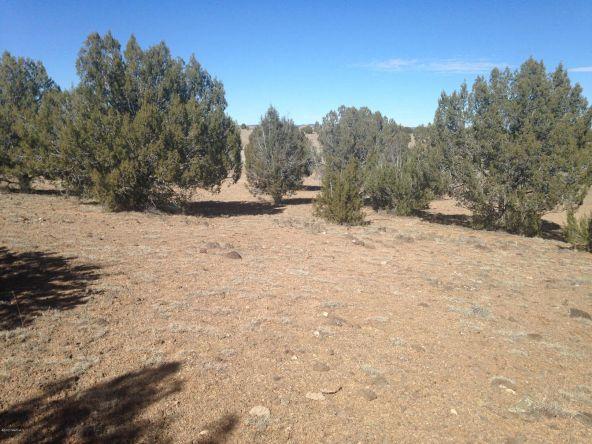246 Antelope Run, Ash Fork, AZ 86320 Photo 5