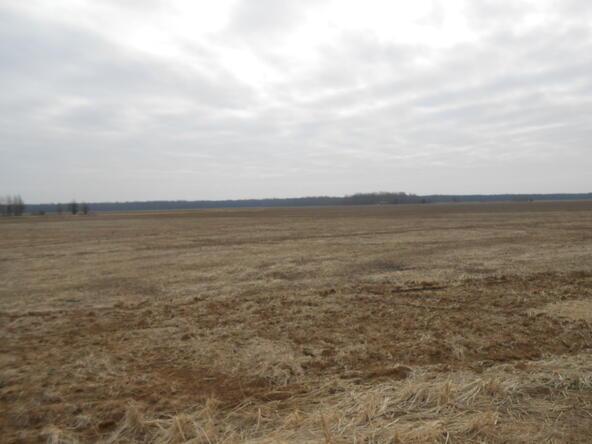 402.93 Acres Long Creek, Waldenburg, AR 72475 Photo 6
