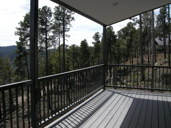 13067 N. Upper Loma Linda N, Mount Lemmon, AZ 85619 Photo 3
