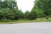 Home for sale: 149 Black Oak Ln., Dawsonville, GA 30534