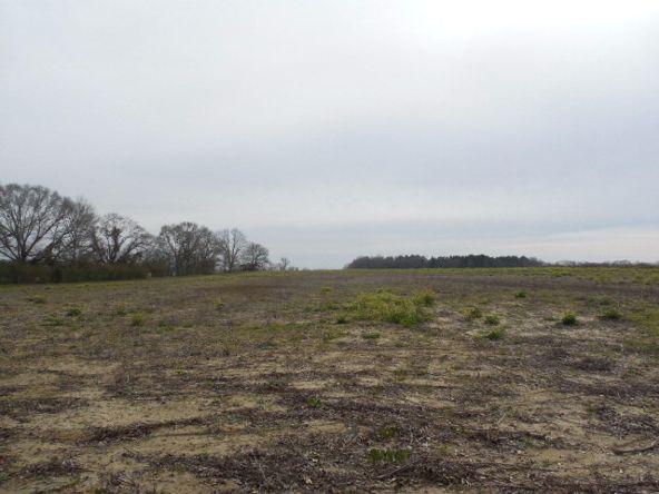 7 Acres Hardy Rd., Rehobeth, AL 36301 Photo 22