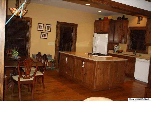 840 County Rd. 106, Mentone, AL 35984 Photo 18