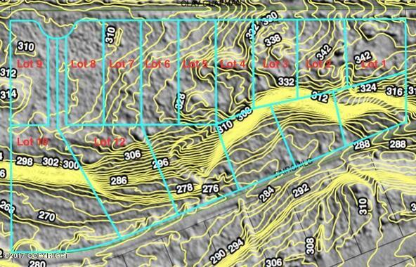 10254 W. Clay-Chapman Rd., Wasilla, AK 99623 Photo 10