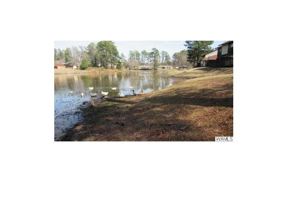 3914 Watermelon Rd. 36c, Northport, AL 35473 Photo 6