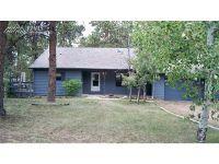 Home for sale: 17690 Grama Ridge Dr., Colorado Springs, CO 80908