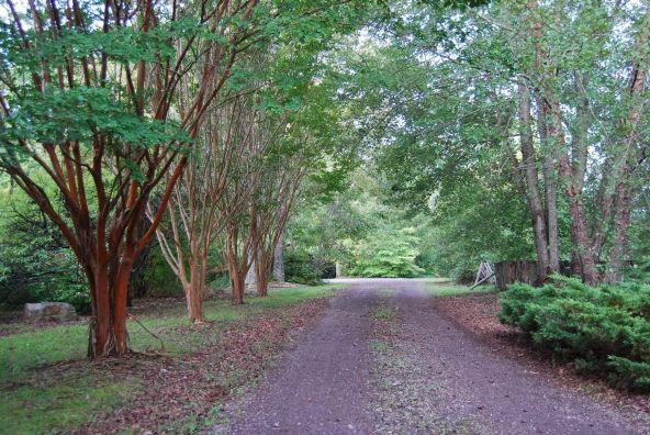 70 County 944 Rd., Mentone, AL 35984 Photo 25