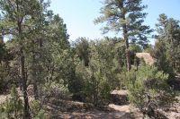 Home for sale: 3650 Green Forest Dr., Heber, AZ 85928
