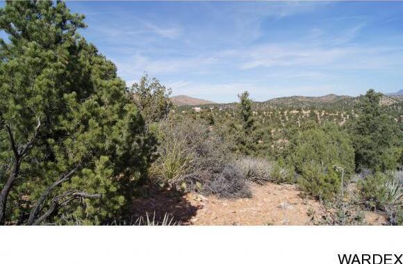 9999 N. Trap Springs Rd., Hackberry, AZ 86411 Photo 23