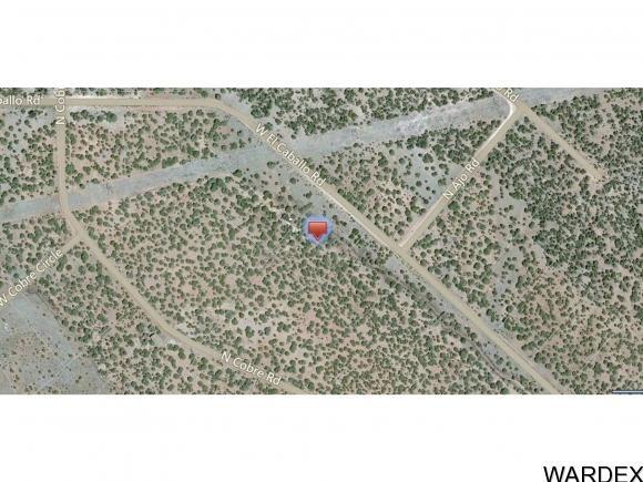 33307 W. El Caballo Rd., Seligman, AZ 86337 Photo 19