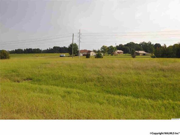 Hwy. 231 N. Little Creek Rd., Arab, AL 35016 Photo 1
