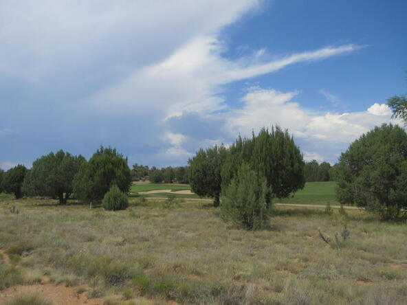 15425 N. Badlands Cir., Prescott, AZ 86305 Photo 3