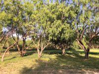 Home for sale: 505 N. Kika de la Garza Blvd., La Joya, TX 78560