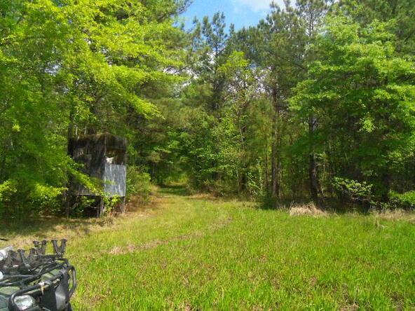 1201 Coon Hop Rd., Hardaway, AL 36038 Photo 28