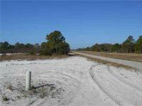 Home for sale: 1001 N.E. Island Pkwy, Lake Placid, FL 33852