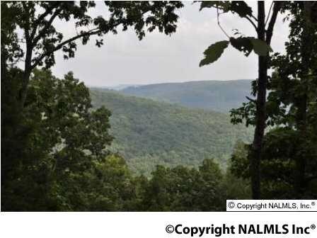 3 South Bluff Trail, Huntsville, AL 35803 Photo 11
