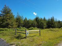 Home for sale: 408 Saddle Horn Ln., Fernwood, ID 83830