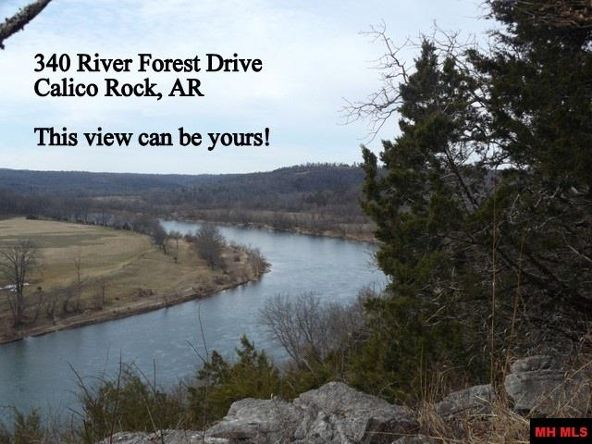 340 River Forest, Calico Rock, AR 72519 Photo 13