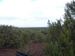 491 Westwood Ranch Lot 491, Seligman, AZ 86337 Photo 9