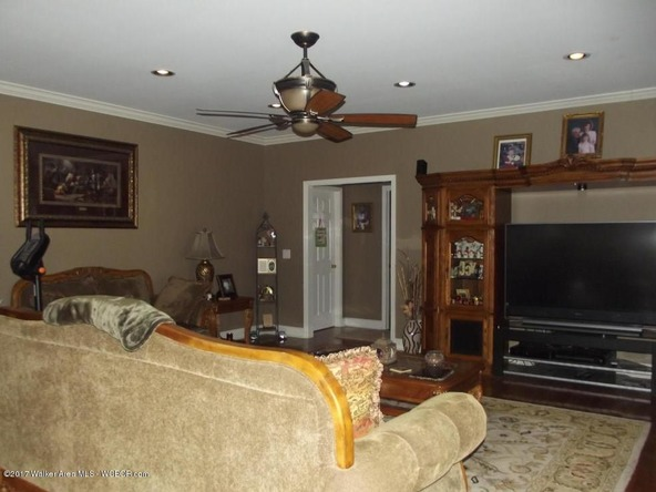 2946 Al-124, Townley, AL 35587 Photo 53